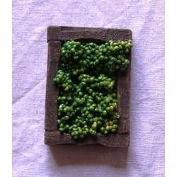 Cassetta uva bianca 017
