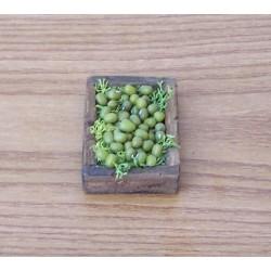 Cassetta olive verdi 019
