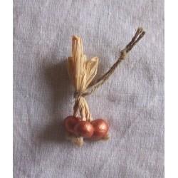 Cipolle rosse 022