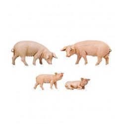 Famiglia maiali