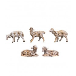 Gregge pecore pz.5