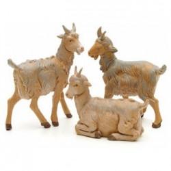Famiglia pecore