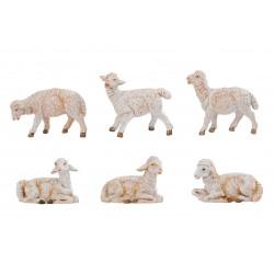 Gregge pecore 6 pz.