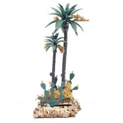Palma doppia con cactus 021