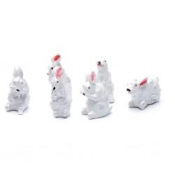 Conigli bianchi 029