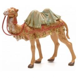 Camello in piedi